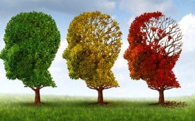 La maladie d'Alzheimer bientôt dépistable